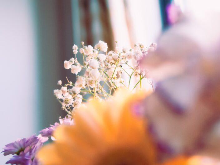 servizio fotografico in casa - come fare foto belle in casa
