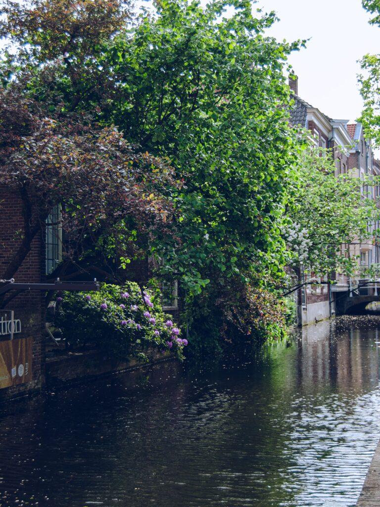 delft paesi bassi city landscape canale ponte