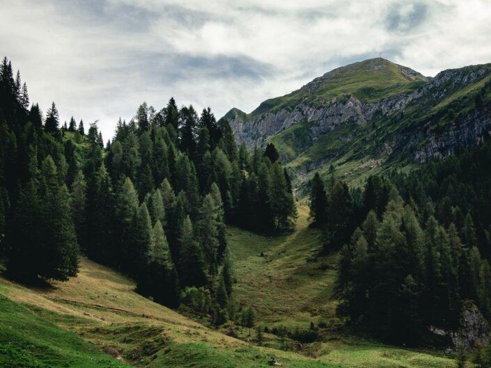 fotografia sentiero casere montagna boschi landscape photography
