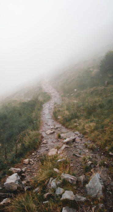 sentiero montagna nella nebbia