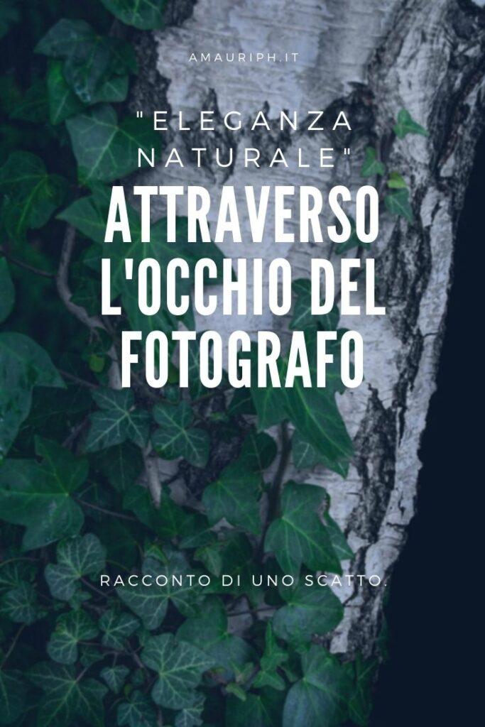 attraverso l'occhio del fotografo - eleganza naturale by arianna mauri- amauriph