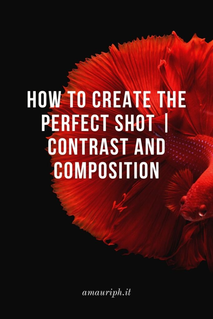 How to create the perfect shot  Contrast and Composition